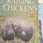 Chicken book