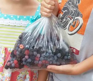 Bag-o-berries
